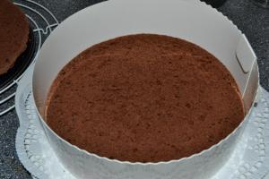 Stracciatella - Erdbeer - Schoko - Torte1